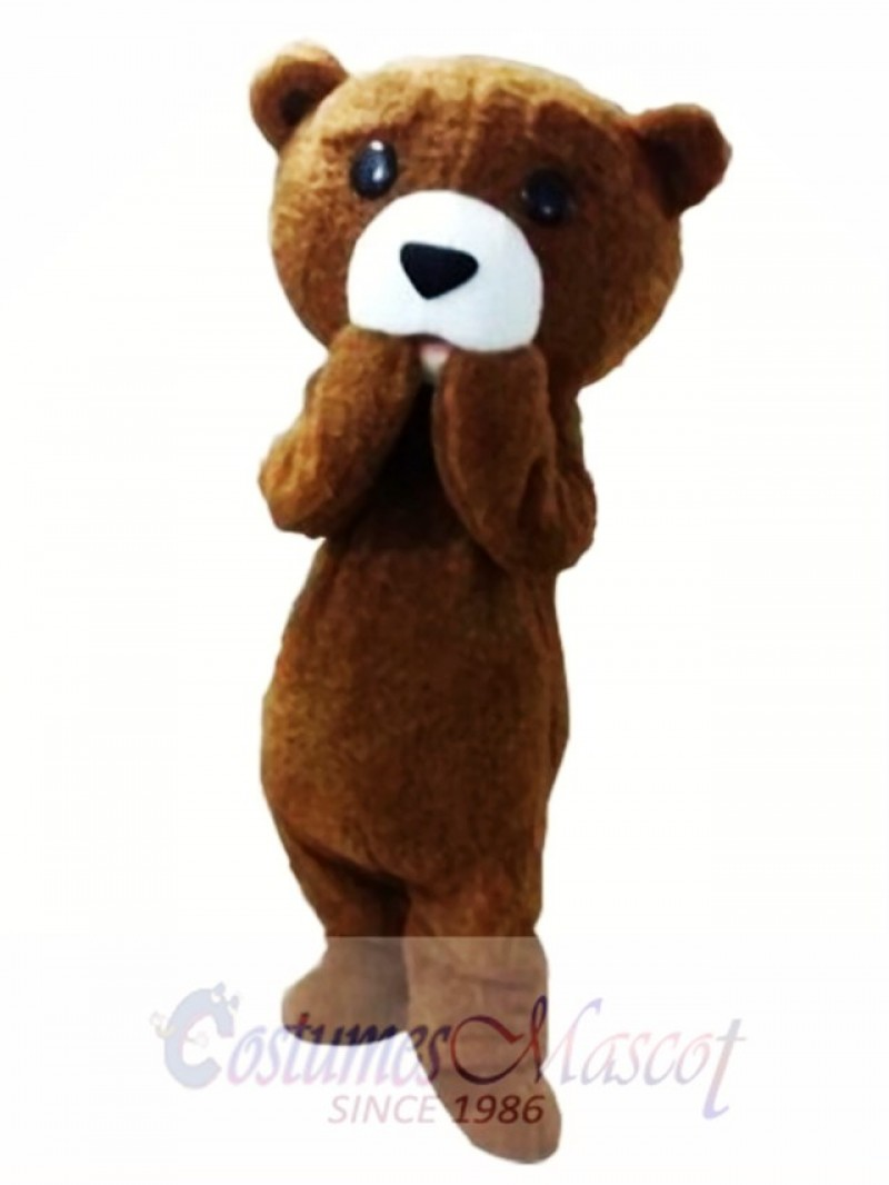Fur Teddy Bear Mascot Costume