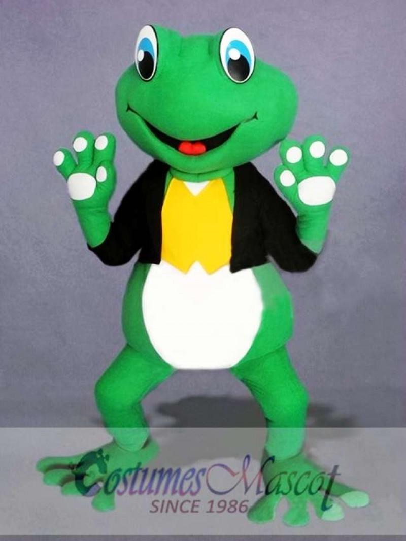 Cute Frog Mascot Costume