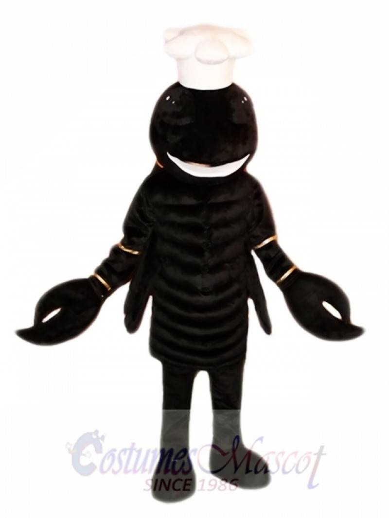 Black Scorpion Mascot Costumes
