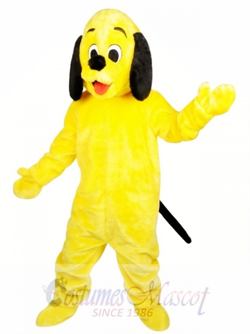 Animal Sunny Dog Adult Plush Mascot Costume