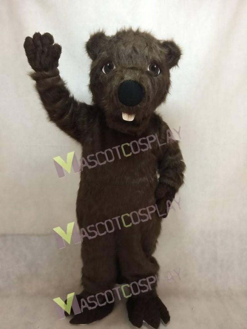 Cute New Beaver Mascot Costume