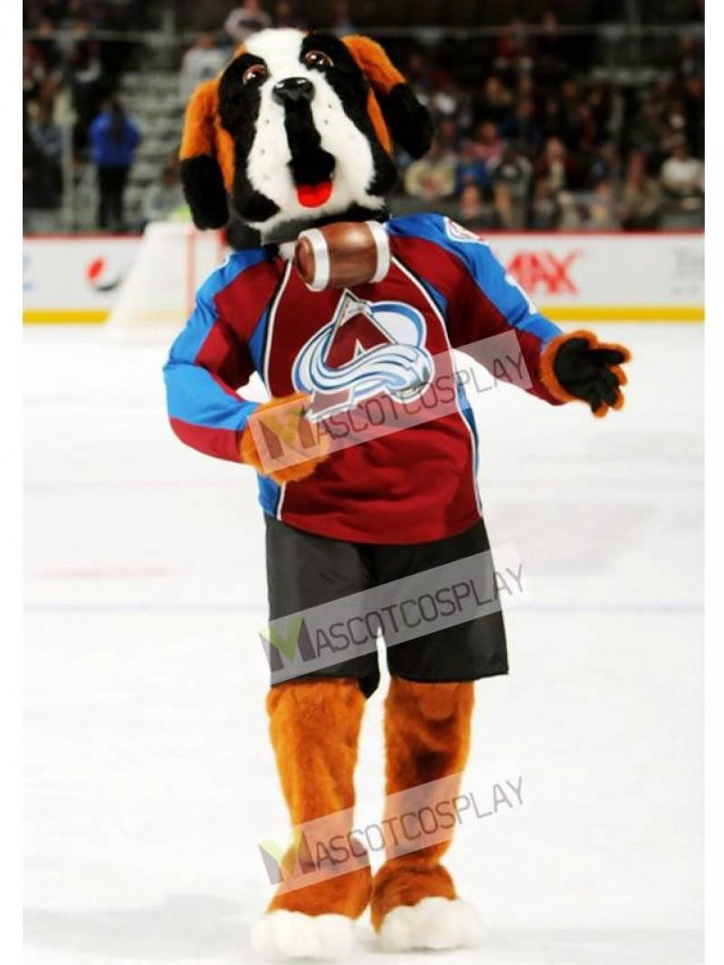 Bernie the Dog St. Bernard Colorado Avalanche Mascot Costume