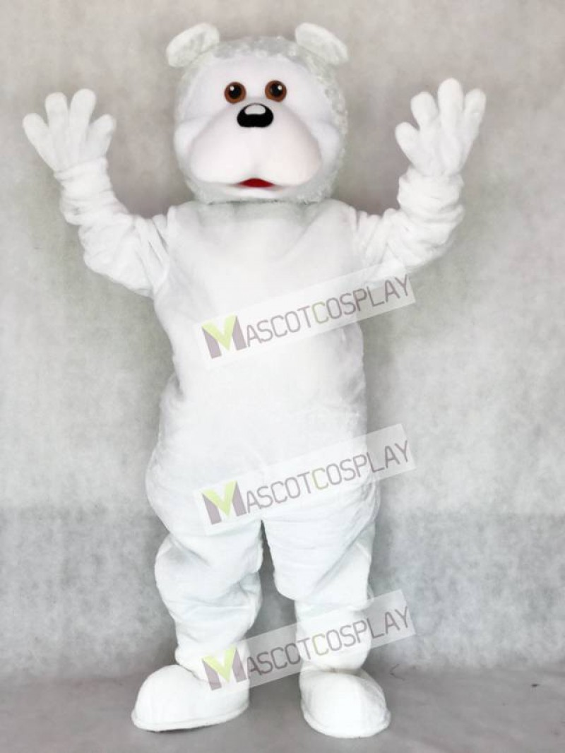 White Bear Adult Mascot Costume