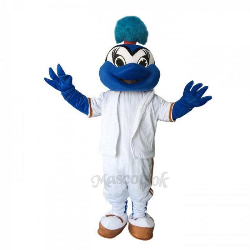 Lovely  Blue birds Mascot Costumes
