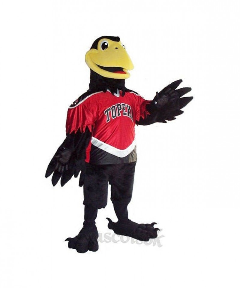 Corny Crow Mascot Costumes