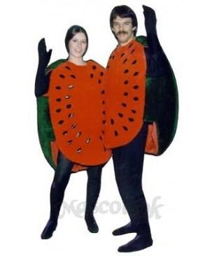 Watermelon Half Mascot Costume