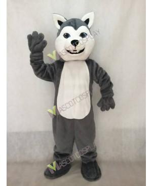 Gray Husky Dog Mascot Costume