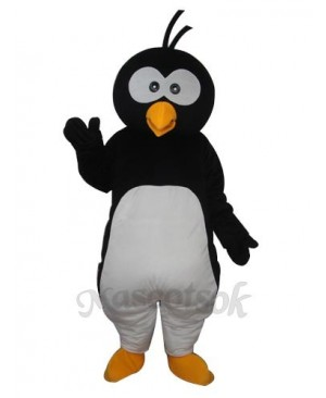 Round Head Penguin  Mascot  Adult  Costume