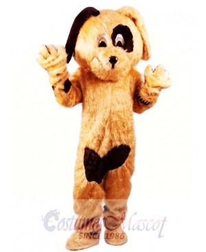 Cookie Dog Mascot Costume