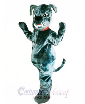 Bull Dog Mascot Costume Adult Costume
