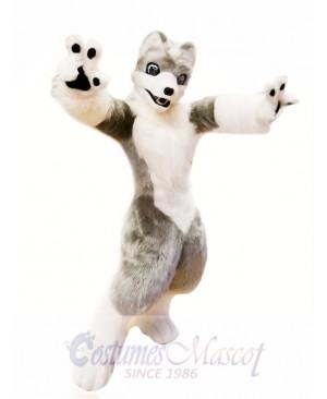 Cute White Grey Wolf Mascot Costume