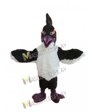 New Woody Woodpecker Black Bird Mascot Costume