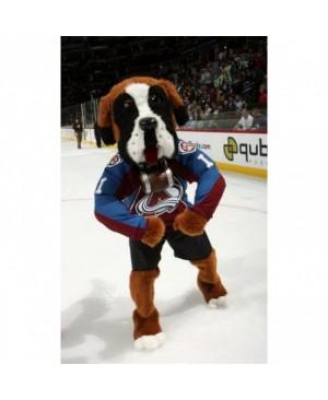 Colorado Avalanche Bernie the St. Bernard All Star Game Bernie Dog Mascot Costume for the Miami Heat