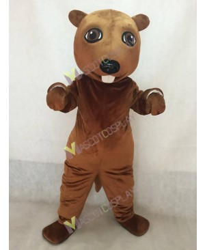 New Lovely Beaver Mascot Costume