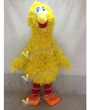 Sesame Street Big Bird Yellow Bird Mascot Character Costume