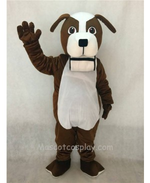 High Quality Adult Brown and White St. Bernard Dog with Barrel Mascot Costume