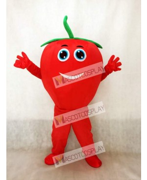 Cute Red Tomato with Smile Mascot Costume