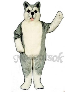 Cute Siberian Husky Dog Mascot Costume