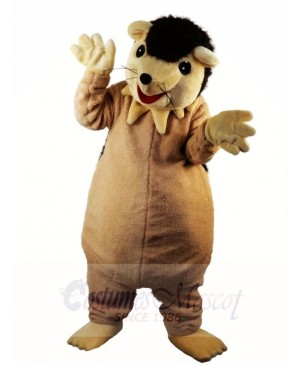 Hedgehog Porcupine Mascot Costumes Animal