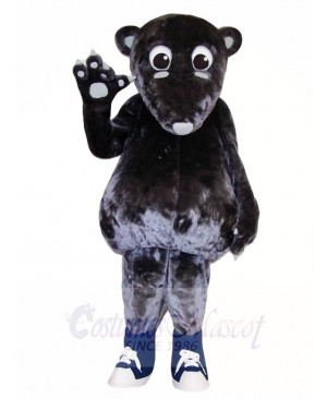 Anteater Mascot Costumes Animal