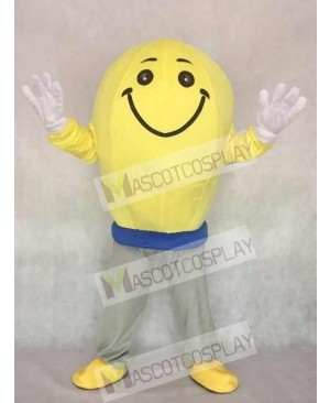 High Quality Cute Light Bulb Mascot Adult Costume
