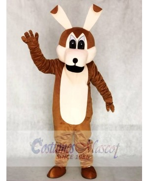 Coyotes Mascot Adult Costumes Animal