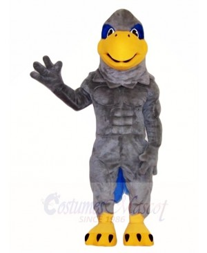 Gray Hawk Mascot Costumes Bird Animal