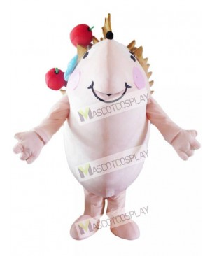 Hedgehog with Red Apples Mascot Costume Animal