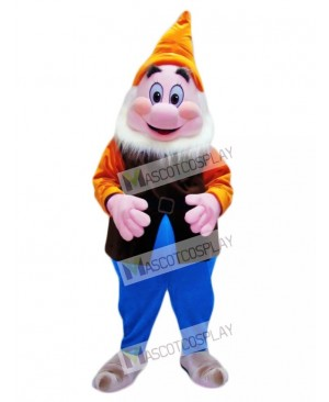 Happy Cheerful Dwarf Mascot Adult Costume