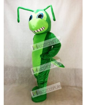 New Grasshopper Mascot Costume Insect