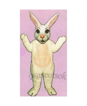 Easter Mr. Bunny Mascot Costume