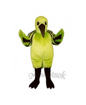 Cute Hummingbird Mascot Costume