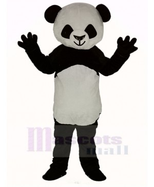 Cute Shorthair Panda Mascot Costume