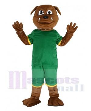 Brown Bulldog in Green Sweatshirt Mascot Costume