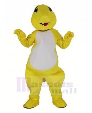 Charmander Pokemon Pokémon GO Pocket Dragon Fire Mascot Costume Cartoon